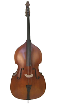 Best Double Bass Lessons in Dallas